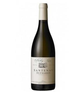 "Santenay blanc ""En Charron"" 2018 - Domaine Bachey-Legros"