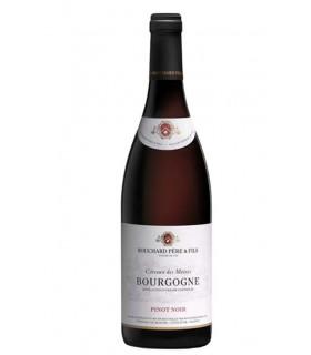 Bourgogne Rouge Coteaux des Moines 2017 - Domaine Bouchard
