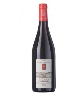 """Anjou rouge """"Coteaux d'Ardenay"""" 2016 - Domaine Patrick Baudouin"""
